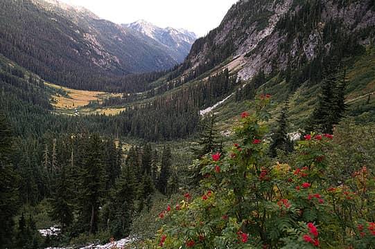 Phelps valley