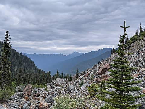 Yellow Aster Butte and Tomyhoi