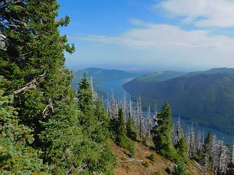 classic view of Lake Cushman from Mt Rose summit