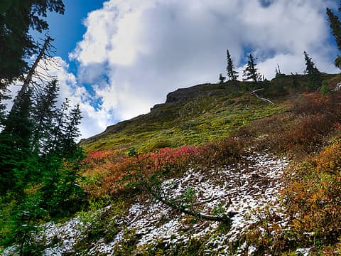 Trail to Gobblers Knob
