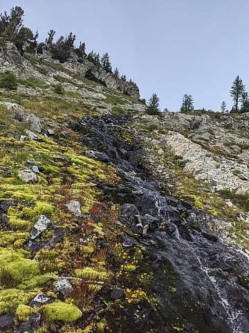 Path up the stream