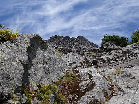 Looking up the east face