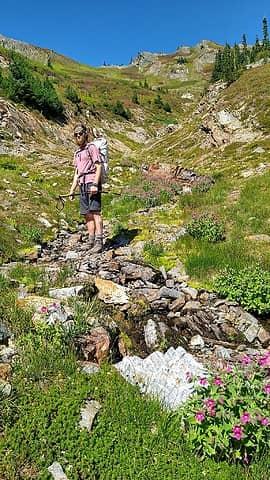 meadows below the pass