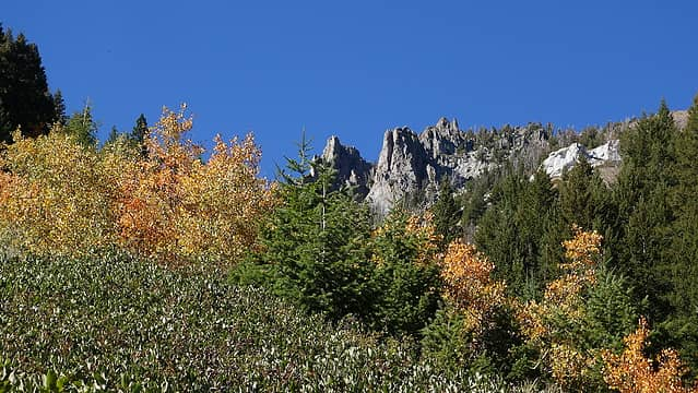 Fall foliage with granite cliffs