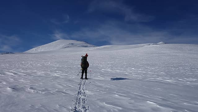 Moving up to high camp