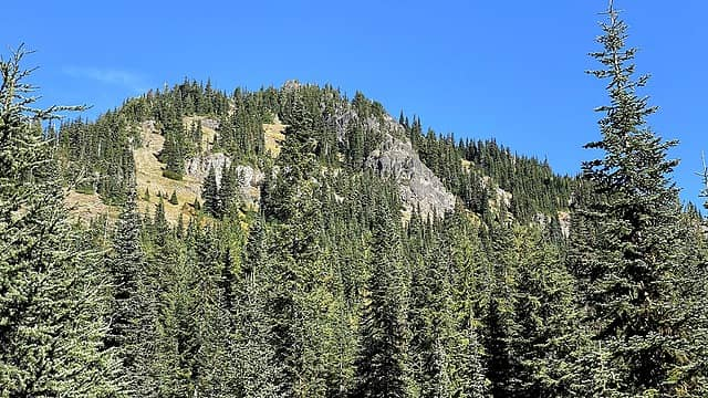 Upper slopes of French Cabin Mountain
